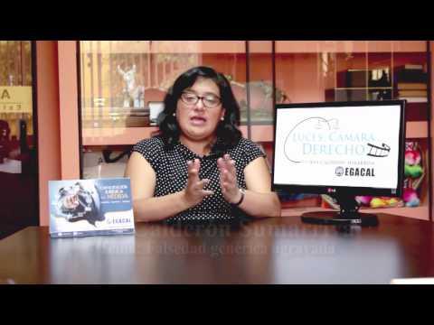 Programa 12 - Falsedad genérica agravada - Luces Cámara Derecho - EGACAL