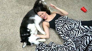 DOG VS GIRLFRIEND!!