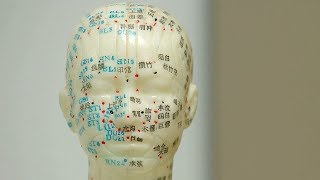 Popularity of acupuncture spurs US-based programs in the practice