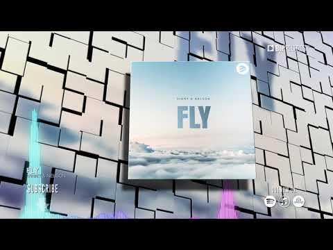 Vinny Nelson Fly