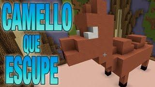CAMELLO QUE ESCUPE | BUILD BATTLE C/ LUH, EXO Y MACU