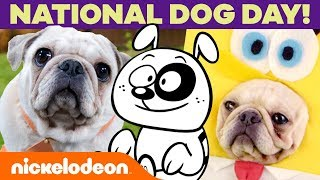 National Dog Day! 🐶 Celebrate Your Pup w/ SpongeBob, The Loud House & 44 Cats | #MusicMonday
