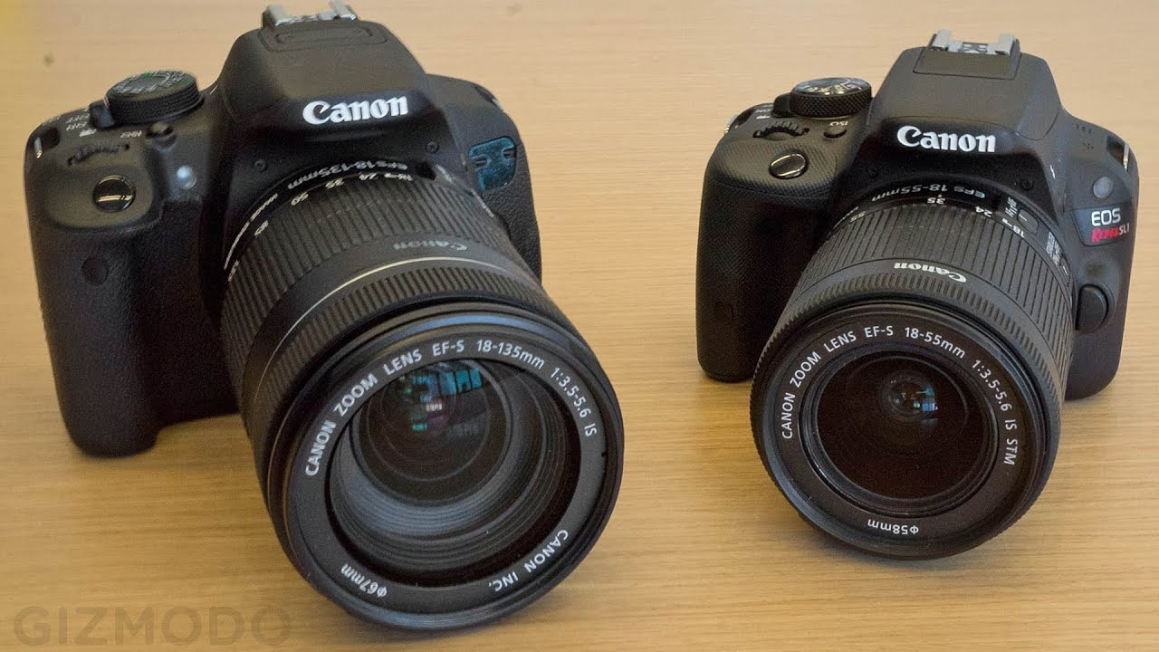 DSLR Cameras Explained: Beginner Vs More Advanced Features