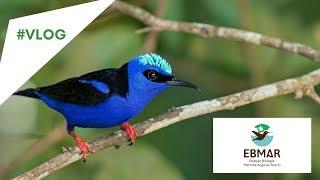 Conhece a EBMAR- Aracruz-ES (ESTAÇÃO BIOLOGIA MARINHA AUGUSTO RUSCHI)?