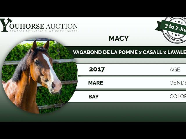 Macy W under the saddle