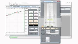 NinjaTrader 7 Tips - Scaling In And Out Of A Position