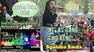 Syahiba Saufa WELAS HANG RING KENE Bareng Bandoel Musik Live In Paspan Banyuwangi