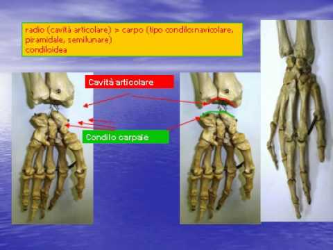 Come utilizzare una patch di pepe con osteocondrosi cervicale