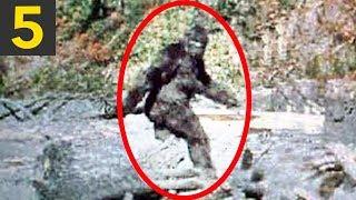 Top 5 Bigfoot Videos