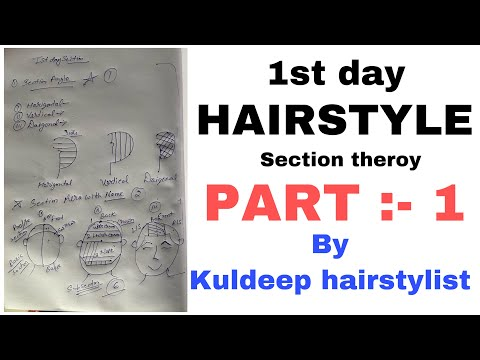 Day 1 / hairstyle section theory / part 1 / kuldeep hairstylist