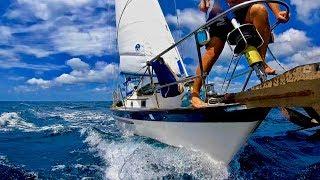 Nicaragua: Sweet Dolphin Sailing [Adventure #144]