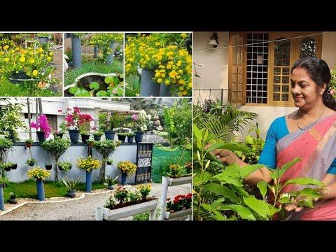 , title : 'Flower garden Overview 2021/House plant collections/Flowering/garden/Gardening update/salu koshy