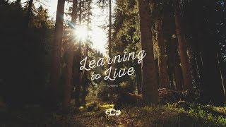Learning to Live Part 26: A Consistent Christian