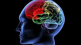 Цветки хлопка вылечат болезнь Альцгеймера