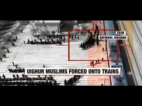 Watch: Uyghur Muslims were whizzed off to detention camps in China's Xinjiang province