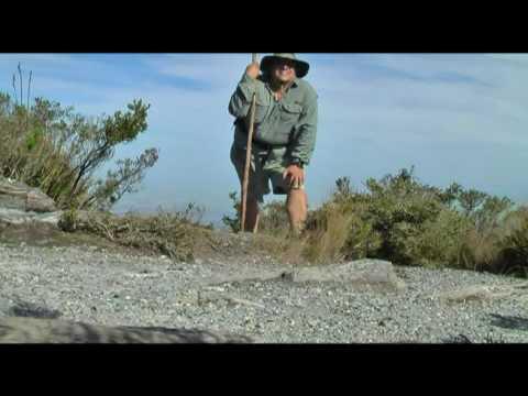Buff Knoll (Australia 4)