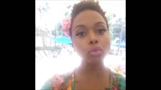 chrisette michele meant to be