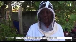 Martinique 1ère Journal Télé – Samedi 12 Décembre 2020