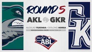 Auckland Tuatara @ Geelong-Korea, R5 | G1