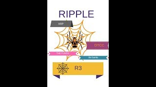 Ripple, XRP, R3, DTCC_the spider web that is wound!!
