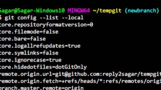 How to view which remote branches are being tracked in git