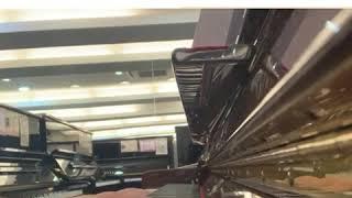 【小型琴月租計劃🥇小型琴也可用至8級‼️‼️】