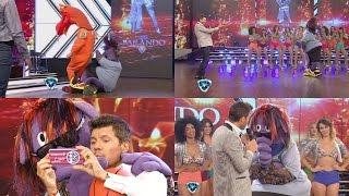 Showmatch 2014 - El Oso Arturo volvió a Showmatch y se burló de la salud de Tinelli