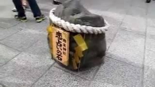 恋が叶う動画京都地主神社にて恋占いの石