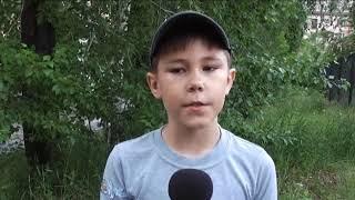 погода от Юного Журналиста Кирилла Никитина на 14 июля