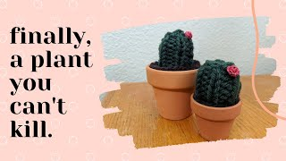 KNIT WITH ME | DIY Knitted Succulent Tutorial!