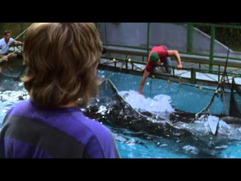 Free Willy - Pelastakaa Willy
