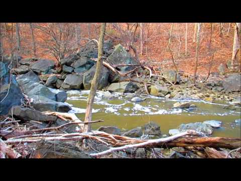 Hiking The Rachel Carson Greenway Trail Naijafy