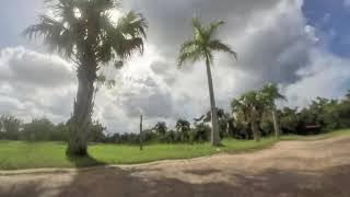 Fail safe DJI FPV 3 inches drone in DRD Park Puerto Rico