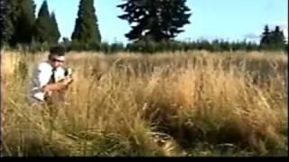 Death Cab for Cutie - Summer Skin - Music Video