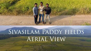Sivasilam Paddyfields Aerial View | Bird eye view ????| Dji Phantom 4????