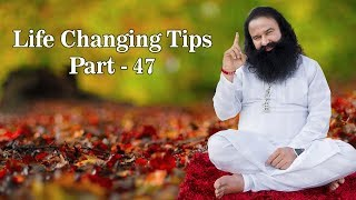 Life Changing Tips Part 47| Saint Dr MSG Insan