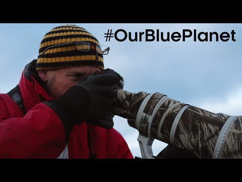 What Does It Take To Be A Blue Planet II Cameraman? #OurBluePlanet – BBC Earth