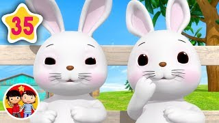 Animales adorables | Nanas para bebés | Little Baby Bum - Canciones Infantiles