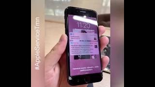 Заменить стекло iPhone 8 Тюмень