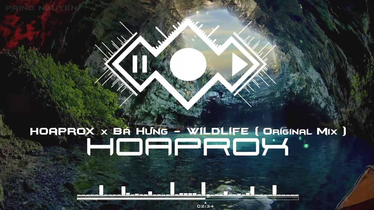 Hoaprox x Bá Hưng - WILDLIFE (Original mix) - (Official Audio) Screenshot Download