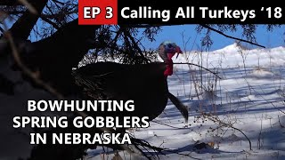 29 Degrees Below Freezing And We're Hunting Spring Gobblers?! - Calling All Turkeys
