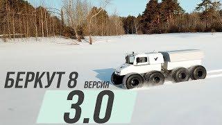 ВЕЗДЕХОД БЕРКУТ 3.0