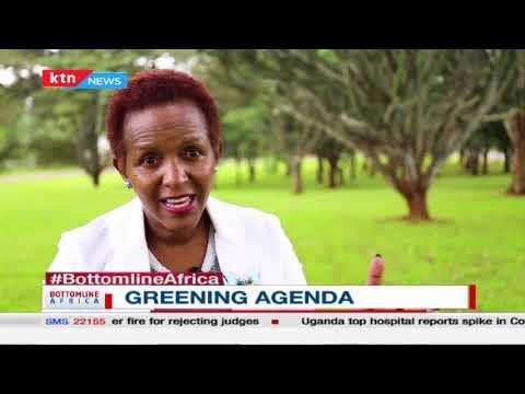 Bottomline Africa: The greening agenda