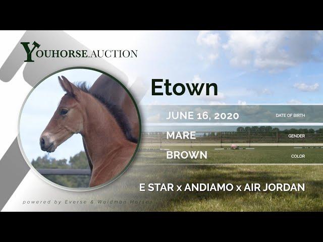 Etown Z