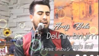 Ali Metin - Delinin Biriyim