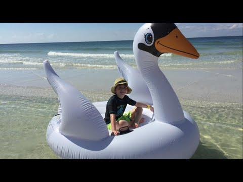11585d8e6255 Mom and Son Rescued After Inflatable Swan Floats Out to Sea