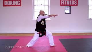 Kata 05.3 – Green Belt – Heian Nidan-Practice