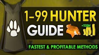Ultimate 1-99 Hunter Guide (Fastest & Profitable Methods)