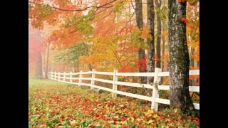 Outono Opus 8 Allegro -  Vivaldi