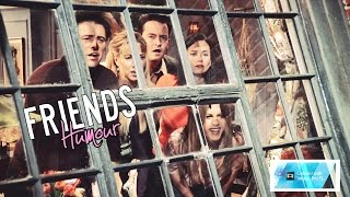 Friends | Its Naked Ross [Season 5 Humour]